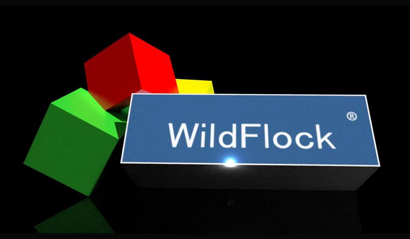 logo WF 3-D